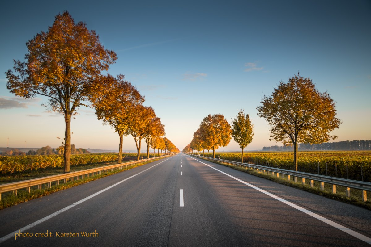 Where Is Your Road LeadingTo?
